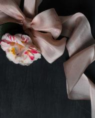 Blush and camellia